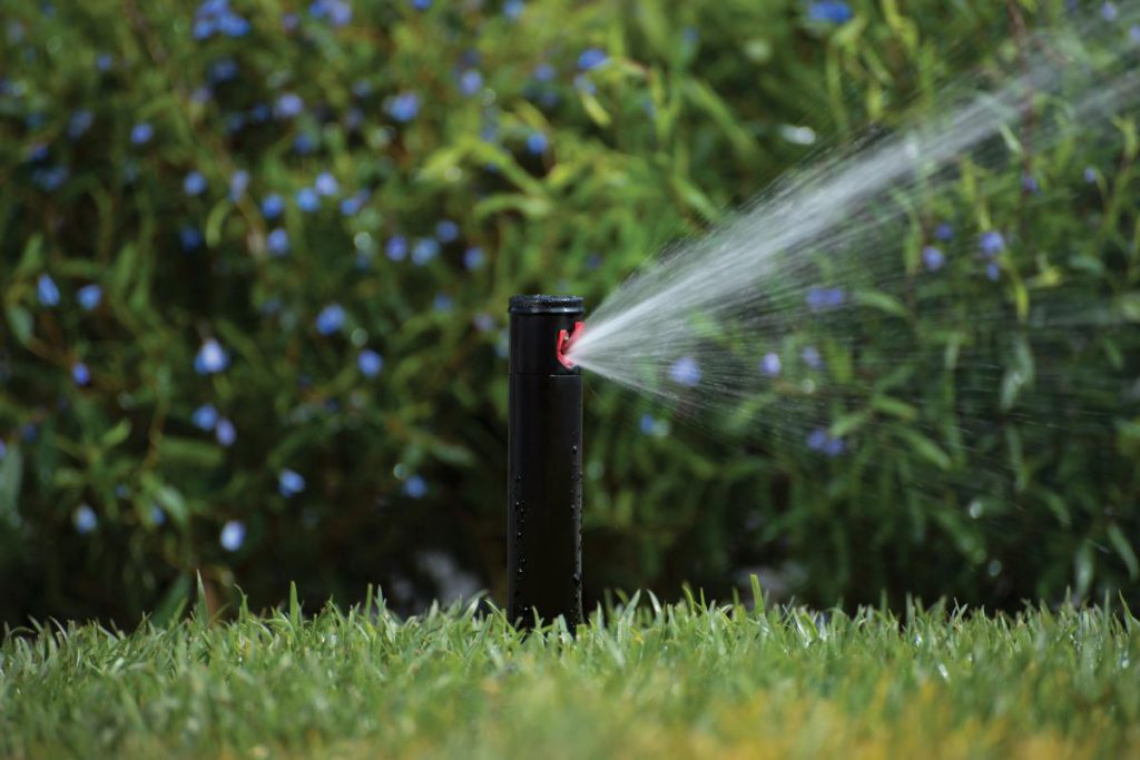 Using Self Watering Systems